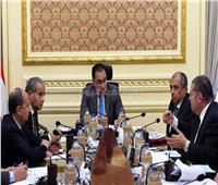 مدبولي: خطة للحفاظ على مكانة القطن المصري