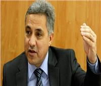 النائب السجيني: دور ورأي المواطن المصري هو الأهم في التعديلات الدستورية