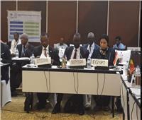 مصر تشارك في فعاليات مجلس وزراء المياه الأفارقة