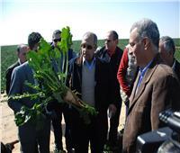 15 صورة تلخص جولة وزير الزراعة بمشروع الـ20 ألف فدان بالمنيا