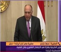 فيديو| سفيرة مصر بـ«دبلن» توضح أهمية زيارة سامح شكري لأيرلندا