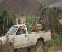صور| الزراعة تواصل حربها  على «الجراد» الصحراوي
