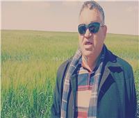 صور وفيديو| الزراعة: التوسع في المحاصيل التصنيعية بالـ20 ألف فدان لجذب المستثمرين
