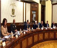 صور  الحكومة تستعرض ترتيبات عقد القمة العربية الأوروبية