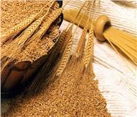 «السلع التموينية»  تتعاقد على شراء 360 ألف طن قمح