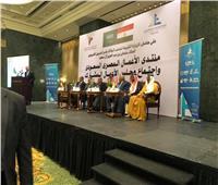 «الوكيل»: السعودية تحتل المرتبة الأولى في الاستثمار بمصر.. و20% من السياحة