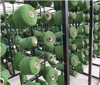 معلومات عن أول مصنع للنجيل الصناعي في مصر