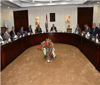 وزير الإسكان يعقد اجتماعا لاستعراض أهمية الرصف الخرساني للطرق