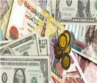 البنك المركزي: تراجع سعر الدولار أمام الجنيه المصري بنسبة 1.4%