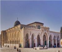 منظمة التحرير تدعو الدول العربية والإسلامية للتدخل لوقف الانتهاكات بالمسجد الأقصى