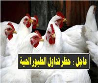 بالفيديو| «الزراعة» تعلن الموعد النهائي لمنع تداول الطيور «حيّة»