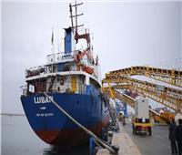 وصول سفينتين عالميتين لأرصفة شرق بورسعيد الجديدة