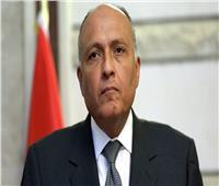 شكري: الاتفاق السياسي هو الإطار الأساسي للخروج من الوضع الراهن في ليبيا