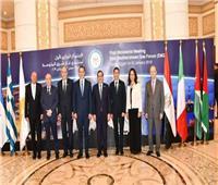 مجموعة عمل «منتدى غاز شرق المتوسط» تناقش إجراءات التأسيس