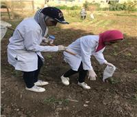 «علوم القاهرة» تمول 20 مشروع تخرج للتأهيل للسوق العمل