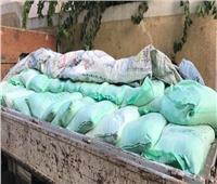 تموين الأقصر: توزيع 66.5 مليون رغيف بلدي على المواطنين
