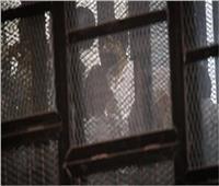 اليوم.. استكمال سماع شهودقضية محاكمة متهمين «أنصار بيت المقدس»