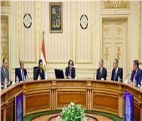 صور..رئيس الوزراء يتابع خطط التعاون ودعم المشروعات التنموية مع الدول الإفريقية