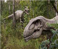 محاولات لإحياء حيوان من عصر الديناصورات