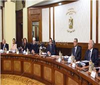 الوزراء:860 ألف يورو منحة من الصندوق الدولي للتنمية الزراعية بمصر