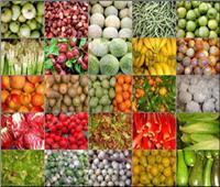 «الزراعة»: الاتحاد الأوروبي يشيد بمنظومة الرقابة على الصادرات الزراعية المصرية