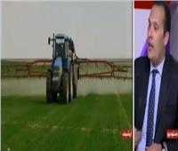 فيديو| «الزراعة»: إدخال سلالات جديدة من الأرز والقطن لتطوير الإنتاج