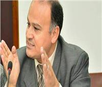 الري: الزراعة في مصر تحتاج إلى 85% من الموارد المائية المتاحة