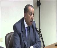 خبير مالي: ملتقى الشباب العربي والأفريقي يسهم في دفع عجلة التنمية داخل القارة