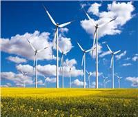 الطاقة المتجددة تحتفل بانتهاء البرنامج التدريبي الأفريقي