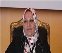 السيد نصير رئيسا لشركة كهرباء الإسكندرية