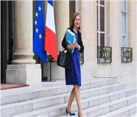 «مزعجة ولا ترغب في الرحيل».. وزيرة فرنسية تُسمي قطتها «بريكست»!
