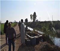 إزالة 55 حالة تعد على الأراضي الزراعية في المنيا
