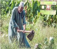 بروتوكول تعاون بين الري والزراعة لتفعيل «الكارت الذكي» للفلاح