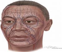 «ُآبل» تقدم تقنية التعرف على الوجه عبر «الأوعية الدموية»