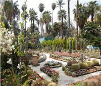 تعرف على تاريخ حديقة الأورمان الحاضن الرسمي لمعرض «زهور الربيع»