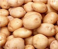 الزراعة: فتح الأسواق التركية أمام البطاطس المصرية