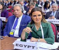 مصر تطالب المؤسسات الدولية بوضع أولويات الدول النامية على رأس أجندتها