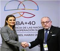 مصر والأرجنتين تتفقان على تعزيز التعاون الثنائي في المجالات الاقتصادية