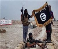 «بعد انهيار حلم الخلافة».. ما هي وجهة داعش المُقبلة؟