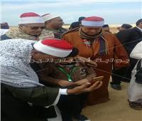 صور| جولة بالأهرامات وغداء على النيل للمشاركين بمسابقة القرآن الكريم