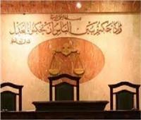 بالأسماء| الحكم على 128 متهمًا في أحداث «الذكرى الثالثة للثورة»