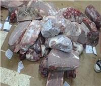 «الزراعة» تضبط 13.5 طن لحوم ودواجن وأسماك غير صالحة بـ 14 محافظات
