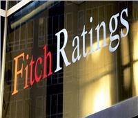 «فيتش» تتوقع تراجع الإنفاق على الأجور والتعويضات دون الـ5%