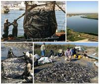 مساحات صيد واسعة وإنتاج ضعيف.. الأسباب والحلول والمناطق الغنية بالأسماك