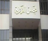 المحكمة التأديبية تعاقب رئيس «تعمير سيناء» لسبه وقذفه أحد المهندسين