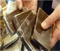 ضبط 30 طربة حشيش و7 تماثيل أثرية في الفيوم