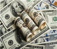استقرار أسعار الدولار في البنوك..٣١ مارس