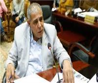 برلماني : السيسى ينتصر للطبقة الكادحة وعلى الحكومة ضبط الأسعار