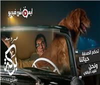 عمرو سعد يستكمل تصوير مسلسل «بركة» في شبرامنت