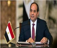 السيسي يعود إلى أرض الوطن بعد مشاركته في القمة العربية